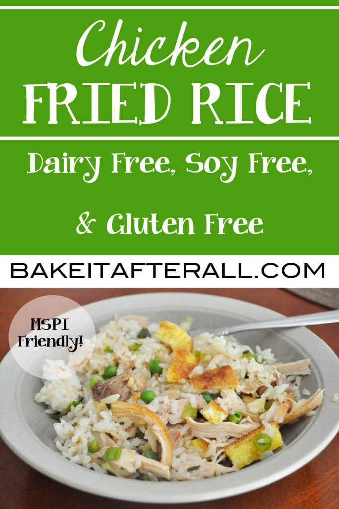 Soy Free Chicken Fried Rice Pin