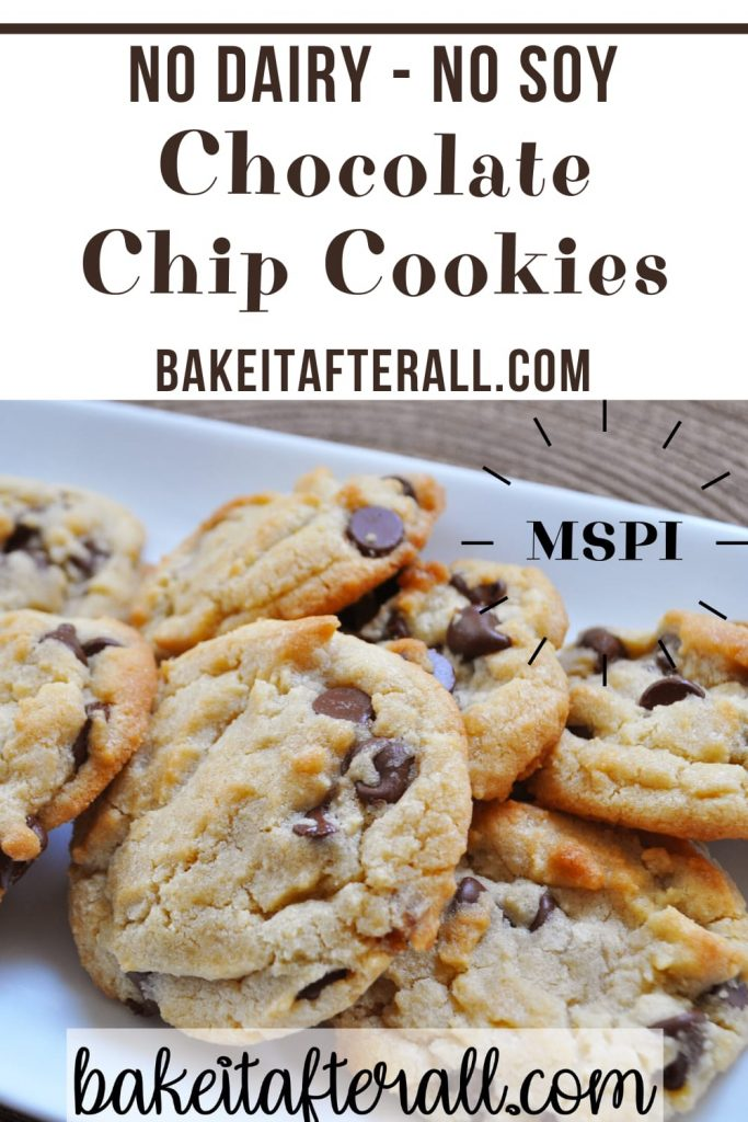 dairy free soy free chocolate chip cookies MSPI