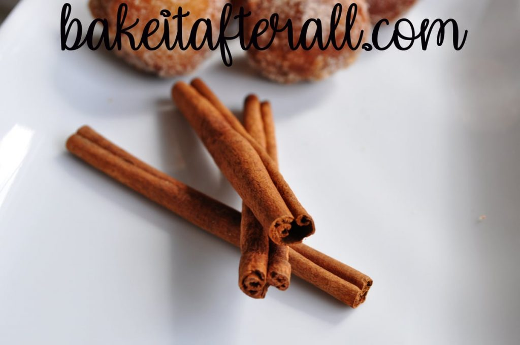 cinnamon sticks on a white plate