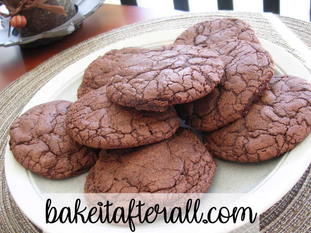 thick and chewy double chocolate cookies